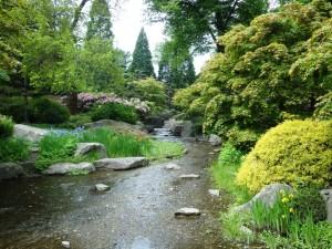 Japanischer Garten Hamburg / Gartengestaltung